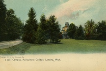 Michigan Colleges / You can also visit http://collegehistorygarden.blogspot.com/ for more information.