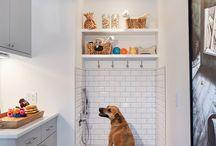 ducha para perro