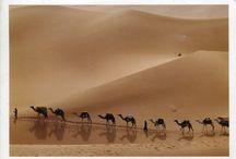 Desert - Çöller