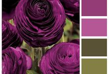 combinatii culori