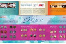 Catálogos Corporativos, trípticos, dípticos, folletos Luisannet / Catálogos corporativos, trípticos, dípticos, folletos diseñados por Luisannet Arte y Tecnología