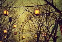 Lights of our life / Lamps sconces candles and so forth / by Samonia Byford