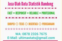 ULTIMASTATS Jasa Olah Data Statistik Bandung / Jasa konsultasi dan olah data skripsi, tesis, disertasi di Bandung