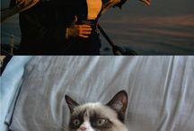 Hilarious!!! / by NB Borroto