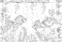 Colouring Books / For color and ideas