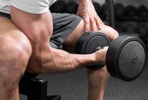 Training: Arms
