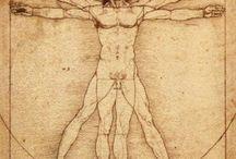Da Vinci anatomy & animals