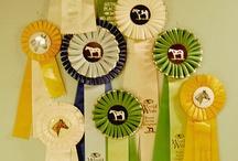 Horse Race Party / Horse race party ideas