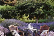 Der Garten im Vintage-Look / Der Vintage-Trend im Garten ist in. Mit den richtigen Blumen und Accessoires lassen sich tolle Ideen mit Stil umsetzen.