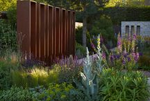 Landscape Architects / Landscape Architects - some I know  / by Caroline Gerardo