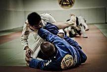 MMA/BJJ
