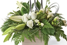 Vases / Display your flowers in a vase to compliment them!