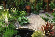 Vodné záhrady