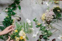 flora / floral decor