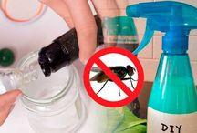 limpieza , desinfección