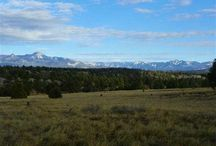 Lot 5 Shooting Star, Pagosa Springs, CO 81147 / Listing Broker - Shelley Low This exclusive offer is only available for a short time with only 5 lots left availabe. All other lots in Timber Ridge are 3+ acres. Huge mountain views that will take your breath away, level building sites and all road maintained by the newly developed Metro District.