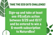 #EcoEats / This board is all about making food choices that are healthier for you and the planet! Take the challenge starting 9/29/2014! Learn more at onesmallact.practicallygreen.com.
