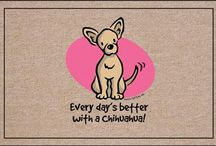 Chihuahua / This board was inspired by my lovely dog chihuahua. His name is Marzipan!!!
