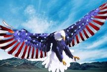 God Bless America! / by Southern Lady's Teacup Poodles Smith