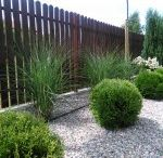 Garden Design 1 / Projektowanie ogrodów