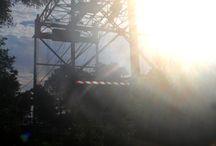 Breaux Bridge LA / by Cathy Sahlfeld