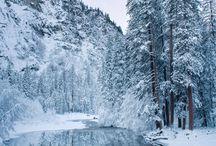 Winter / by Traci Knight
