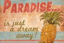 ♡ Paradise ♡ / Dream away