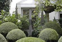 Gardens / by Kimberly Tatum