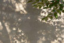Mijn schaduwfoto's / My shadowpictures / Schaduwen