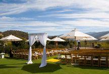 Phillips-Quinn Wedding