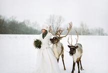 Winter Wedding / winter, wedding, snow, Siberia