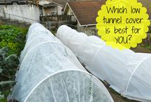 Season Extension Methods / Season extension methods like row covers, mini-hoops, low tunnels, cloches, and others are a great way to extend your growing season and get more production out of your garden.