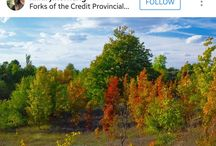 Forks of the Credit, Ontario Parks
