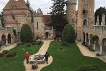 Bory Castle