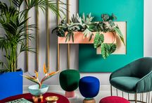 coloured interiors