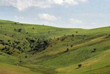 Panoramas of Guelma