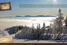 Real Estate Sites / Here are examples of website design and development for Real Estate by Nichols Interactive.  Third party systems integrations include the Vail Valley MLS and PropertyBase (a division of Salesforce).