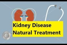Kidney Disease Natural Treatment