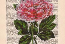 Dictionary flower