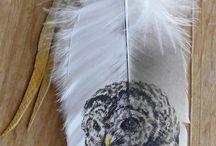 feather  veer veren / veren veren en nog eens veren knutselen   met veren diy