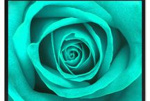 """Flower, Flower Art, Home Decor, Gift Ideas / SpotColorArt.com * We Have Over 20,000 NEW Art Design in 2016 Beautiful Home Decor Art & Gift Ideas for Everyone. """"New"""" Trends, Inspirational Quotes, Motivational, Funny, Typo, Photo, Folk Art and MORE. Hand Made in USA. Update your home décor with stylish, Framed Art, Custom Made Canvas Art! They come available in an incredible range of vibrant colors, sizes and designs to choose from! """"NOW"""" On SALE Start $19.99 -"""