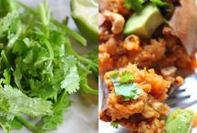 Recepten / Fijne, gezonde gerechten