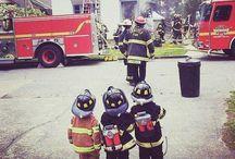 Firefighter photos