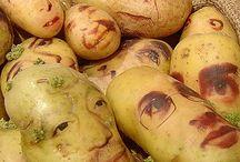 I am a potato / by So Succulent