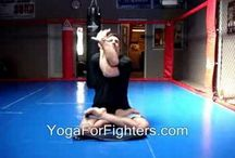 Martial Arts / Muay Thai and BJJ related