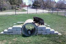 Hundegården