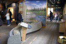Design di spazi espositivi