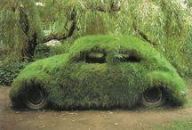 Unusual Gardening