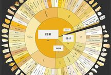 Infography / by Vincent Lfbvre