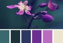 Barvy / Colours